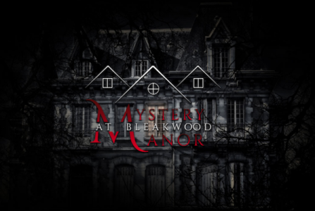 Mystery at Bleakwood Manor