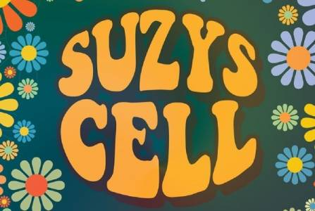Suzy's Cell