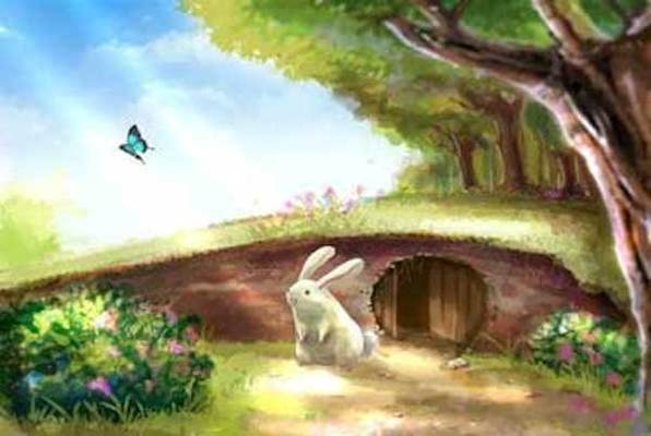 Into the Rabbit Hole